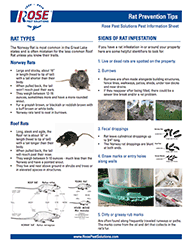 Download Rat Prevention Tips