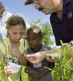 Rose Entomologist Mark Sheperdigian looks at bugs with  YMCA day campers