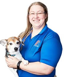 Angie and Vernor Rose Michigan Canine Bed Bug Team