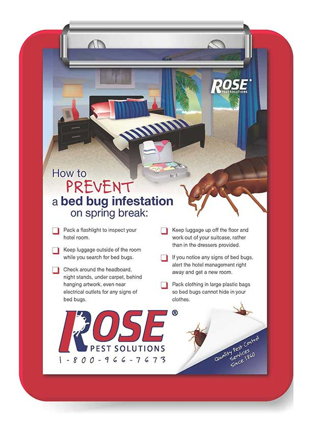 travel checklist to help prevent bringing bed bugs home