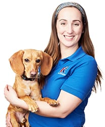 Kelsey and Archer Rose Michigan Canine Bed Bug Team