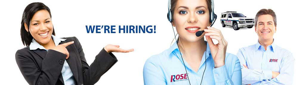 Rose Is Hiring!